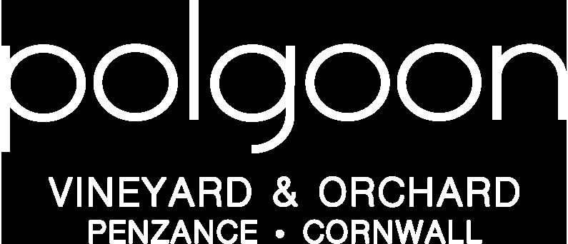 Polgoon