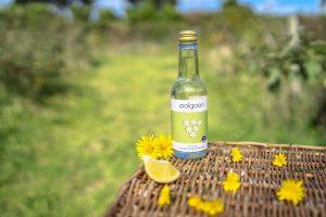 Vegan Wine From Cornwall