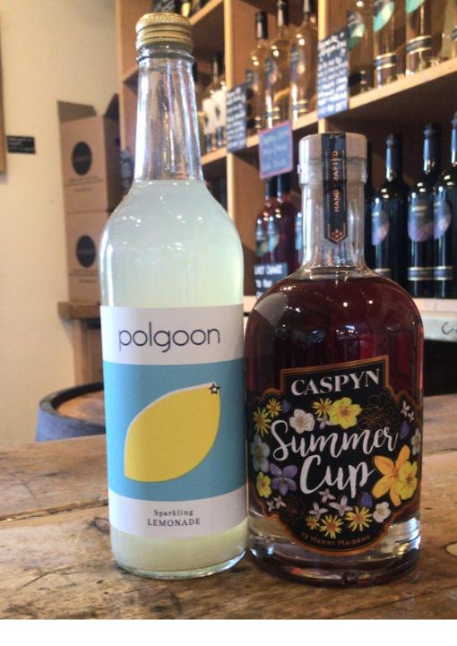 Caspyn Summer Cup & Lemonade